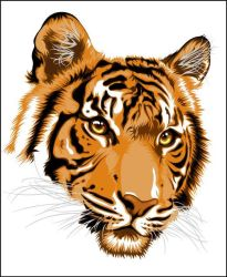 Tiger Vector by onebetweenus
