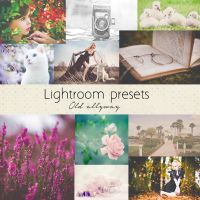 Old Allyway lightroom presets by Pamba