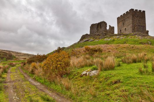 Dolwyddelan Castle Path by somadjinn