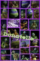 Donatello by PrincessEmerald7