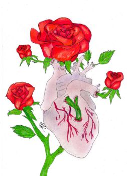 Heart and roses by Christie0109