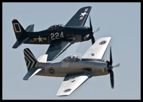 Bearcats Chino I by AirshowDave