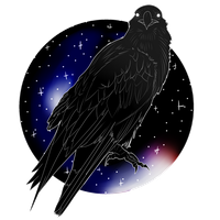 Galaxy Raven by Calisii