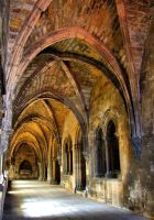 Gothic cloister of Lisbon cathedral by vmribeiro