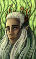 King Thranduil by lady-largo