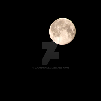 in the moonlight by Saanmo