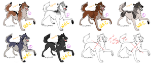 ALL ADOPTED by WolfAdoptionClub