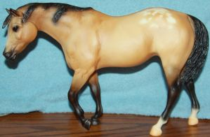 Breyer - Sheza Good Sport - Stock 1 by Lovely-DreamCatcher