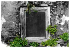 Old Window by daluxe