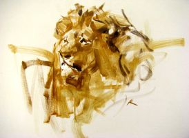 painting a lion by alrasyid
