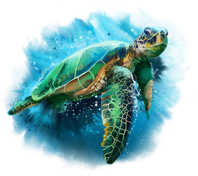 Green sea turtle by Kajenna
