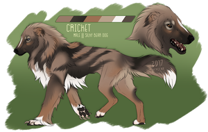 Cricket (Reference) by dergenn