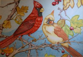 Cardinals In Fall by KW-Scott