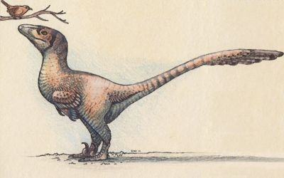 Deinonychus with Wren by EWilloughby