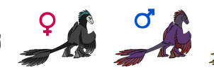 ~Glideraptor Adopts 2~Uncommon Colours~Closed~ by Xbox-DS-Gameboy