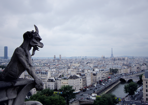 Gargoyle of Notre Dame by GinHans