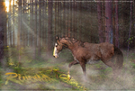 Rivendell PNG by NebulaArtz