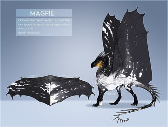 WOF OC | Magpie [Updated Ref] by Toxic-Flow