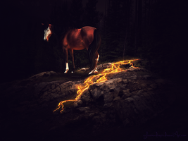 art trade :: the fire, how it burns by xglassraindrops