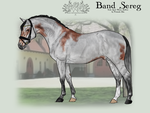 OVEC Band Sereg by SageSinRiddle