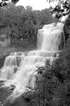 White Water in Black and White by cindy1701d