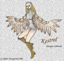 Kestrel by TwilightFalcon