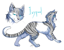 Warriors: Ivypool by Marshcold