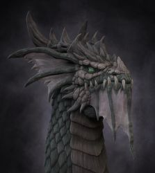 Dragon by Schlossbauer