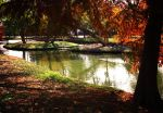 Fall's Magic by PhillyPuddy