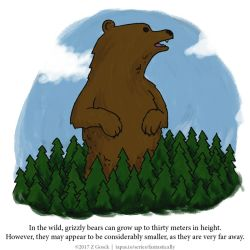 A Fantastically False Fact About Grizzly Bears by Zombie-Kawakami