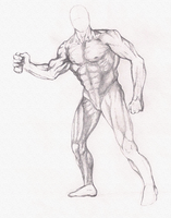 Anatomy Practice [Usable as Reference if you want] by Dex91
