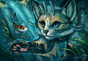 Water cat by FlashW
