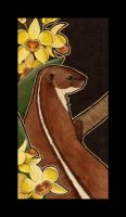 Back-Striped Weasel and Dendrobium sulcatum by Ravenari