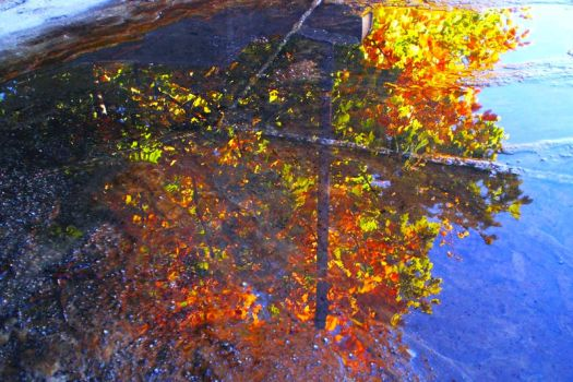 Autumn Reflection by 1misio