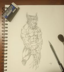 Wolverine study 2 by HART1991