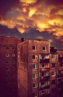 In this wicked weather. by cichutko