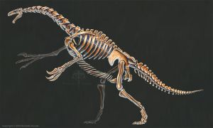 Nothronychus Graffami Skeletal Study (No Labels) by TheDragonofDoom