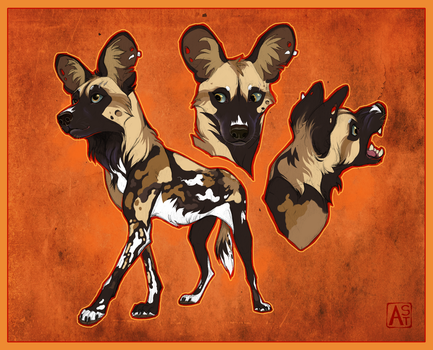 Kamo the African wild dog by Astarcis