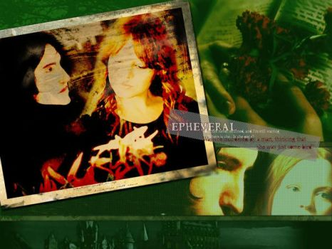Severus x Lily Wallpaper by Severus-x-Lily