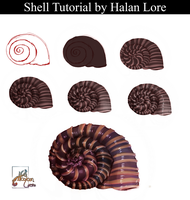 Shell Tutorial by HalanLore