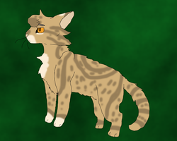 Leafpool Design by TheRealBramblefire