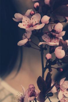 I Blossom In The Spring by AliCat2011