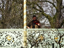 Violinist in the Park III by Atlantagirl