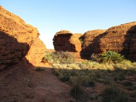 Kings Canyon - Sun and Shade by TricoloreOne77