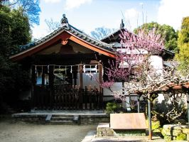 At Toshodai-ji by FubukiNoKo