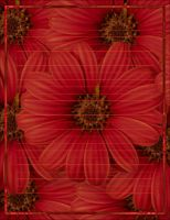 Red Flower Stationary by MadameM