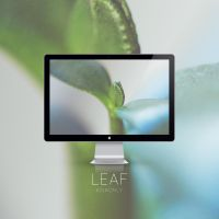 Leaf by ASIAONLY