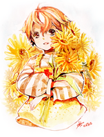 Sunflower by arielucia