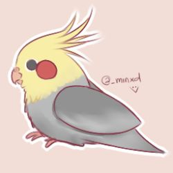 Birb by MincxD