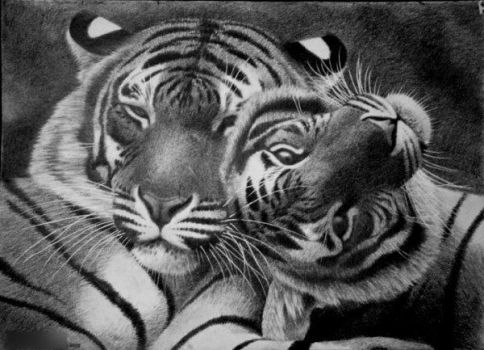 Serenity, pencil by Panthera11